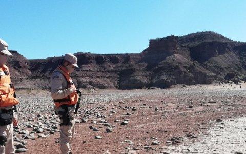 La prefectura descubrió huellas de dinosaurio en la Patagonia