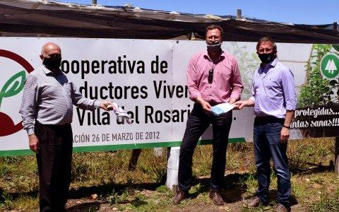 Valoran la importancia de la salud fitosanitaria y calidad de los cítricos para la economía entrerriana